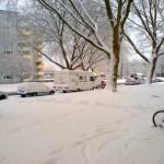 Winter auf der Graf-recke